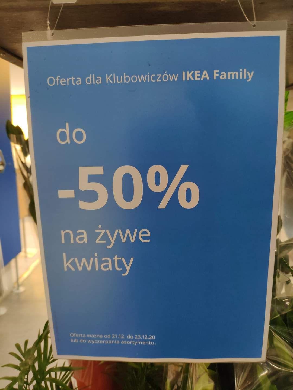 IKEA Targówek - 50% na żywe kwiaty