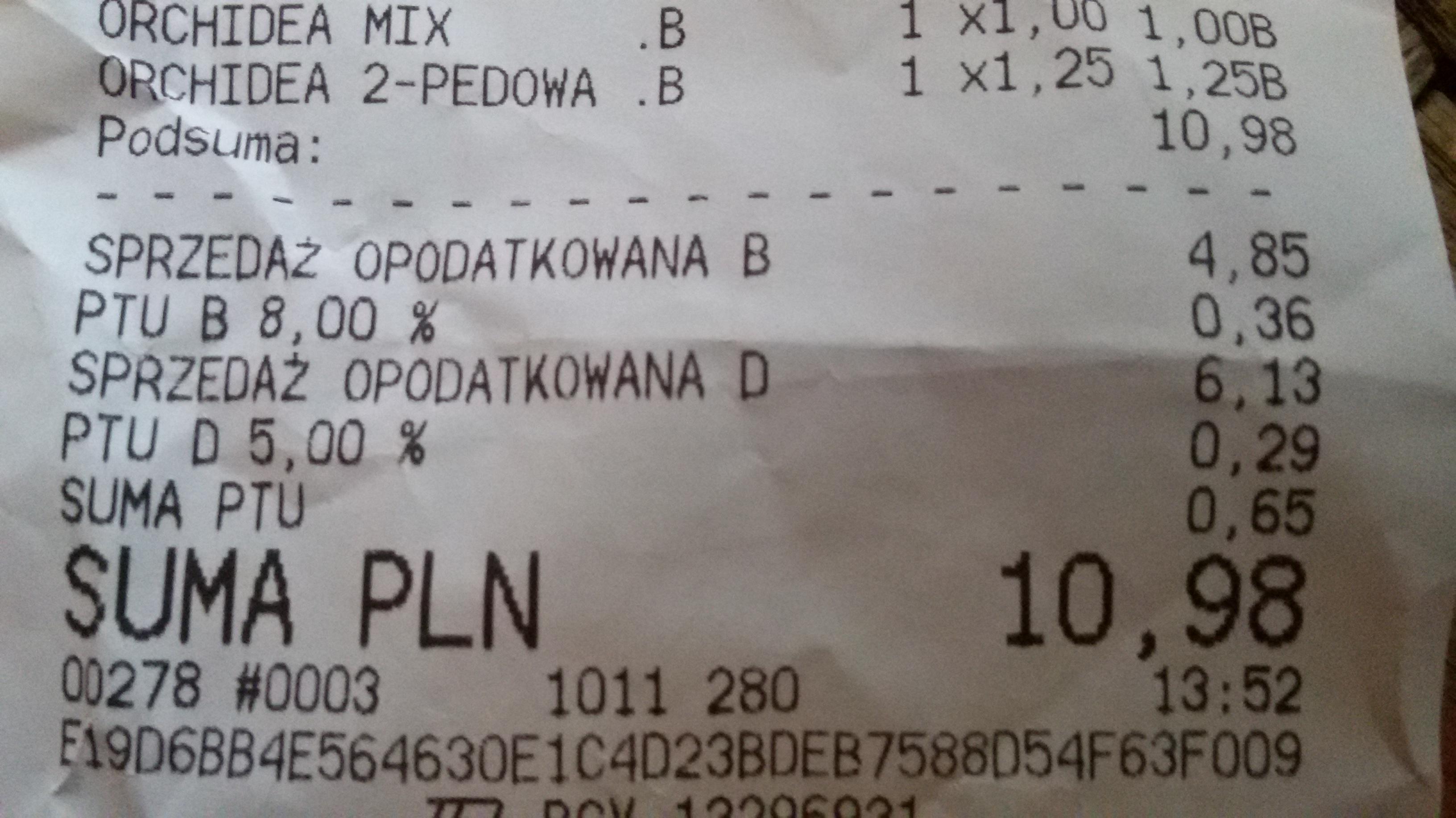 Storczyki 1 i 2 pędowe, MEGA OKAZJA W TESCO!!!