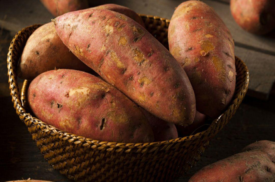 Bataty czyli słodkie ziemniaki Kaufland