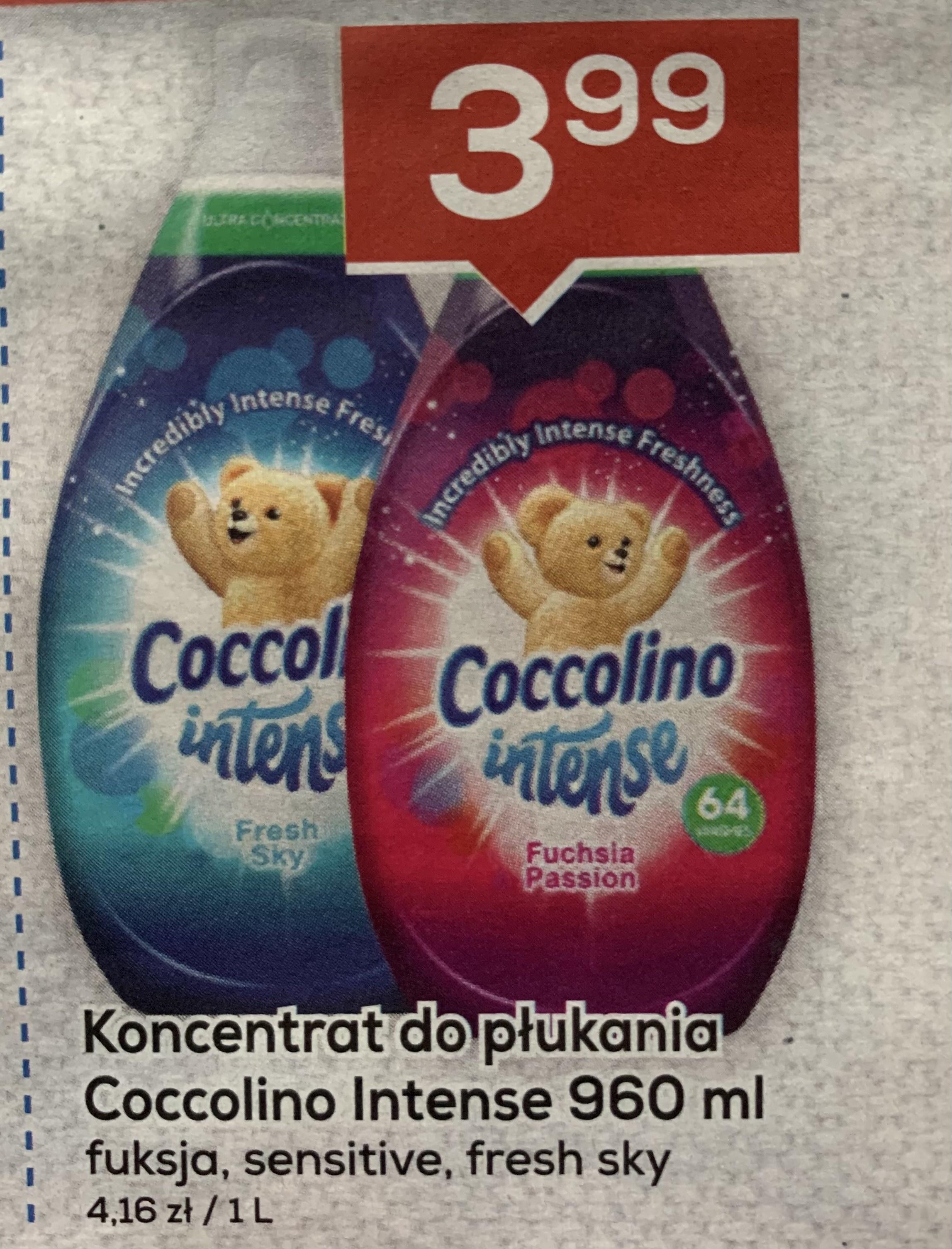 Koncentrat do płukania Coccolino Intense 960 ml - Lewiatan