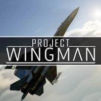 Project Wingman PC @g2a