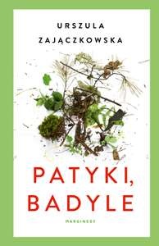eBook Patyki, badyle - Urszula Zajączkowska
