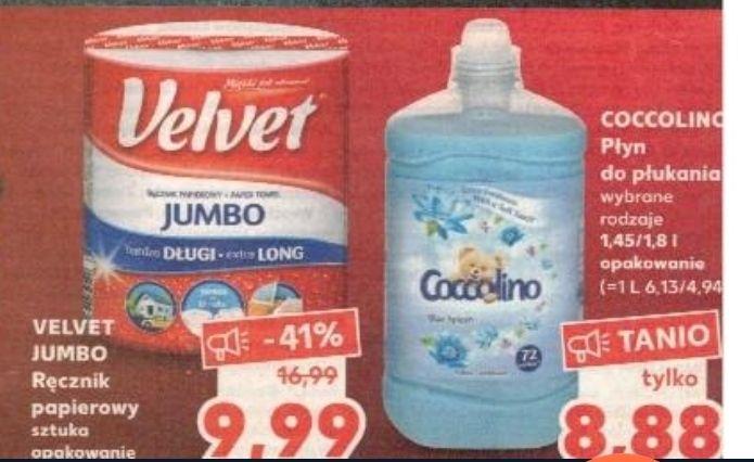 Ręcznik papierowy Jumbo 9,99 zł i płyn do płukania coccolino 1,45-1,8 l/ 8,88 zł