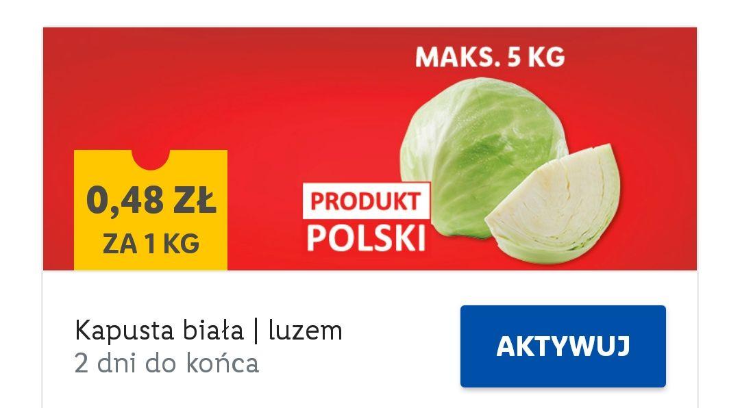 Kapusta biała (cena za kg). Lidl