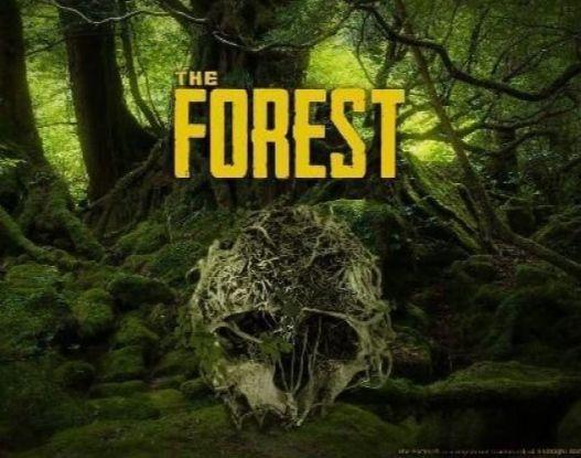 The Forest - PC w historycznie niskiej cenie w sklepie Steam