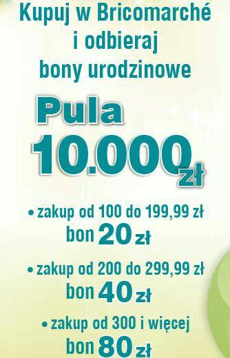 Bricomarche urodzinowe bony - nawet 80 zł!