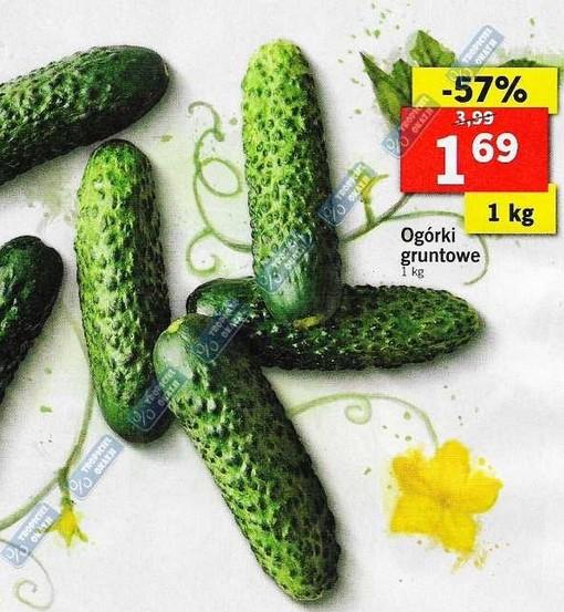 Polskie ogórki gruntowe 1kg za 1,69zł Lidl 57% taniej
