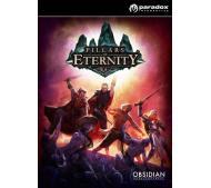 Pillars of Eternity (PC) za 79,99zł (tylko stacjonarnie) @ Euro