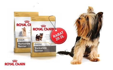 Karma Royal Canin dla Yorka 20 złotych taniej !