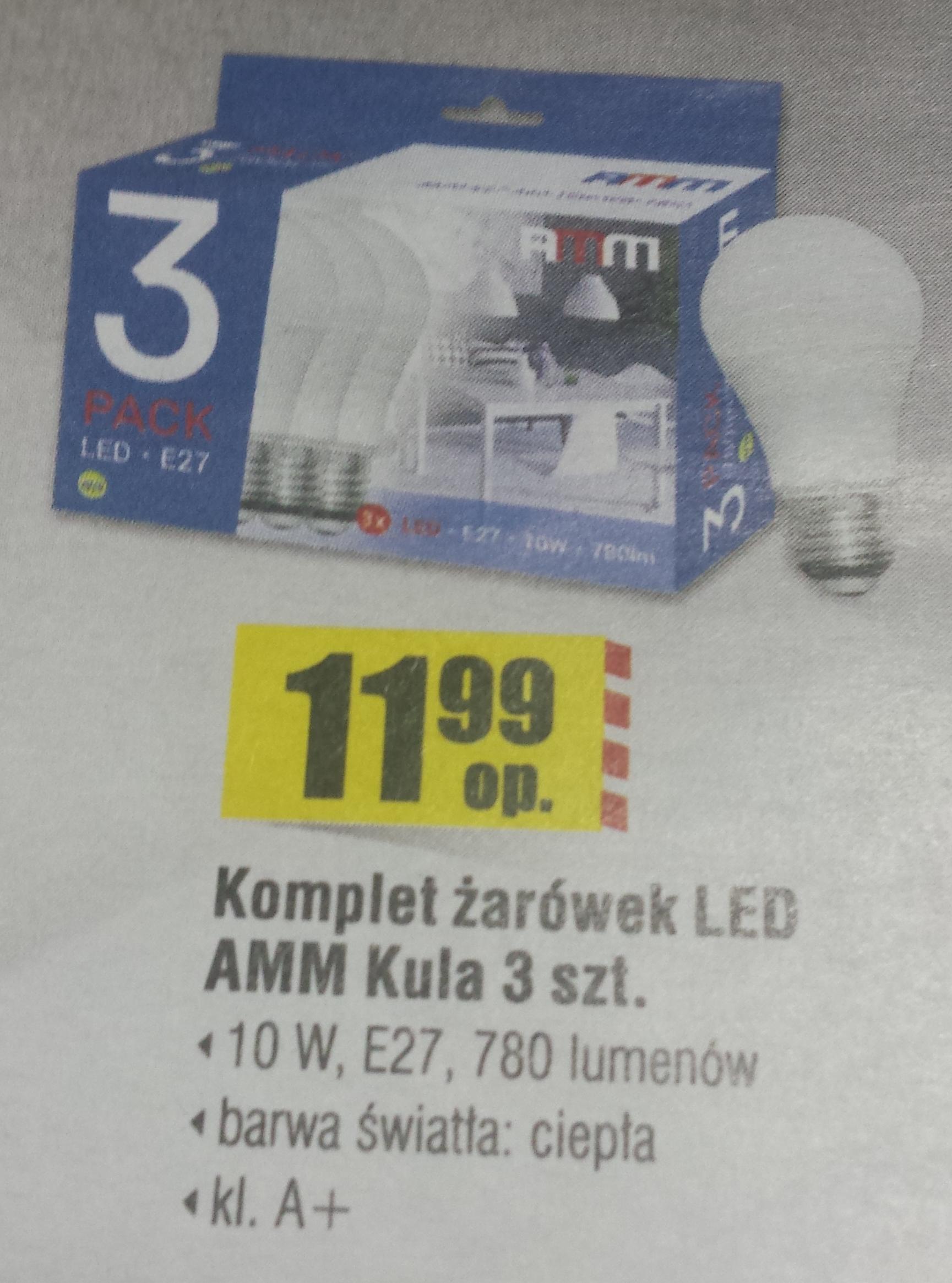 Komplet 3 szt. żarówek LED 10W Bricomarche