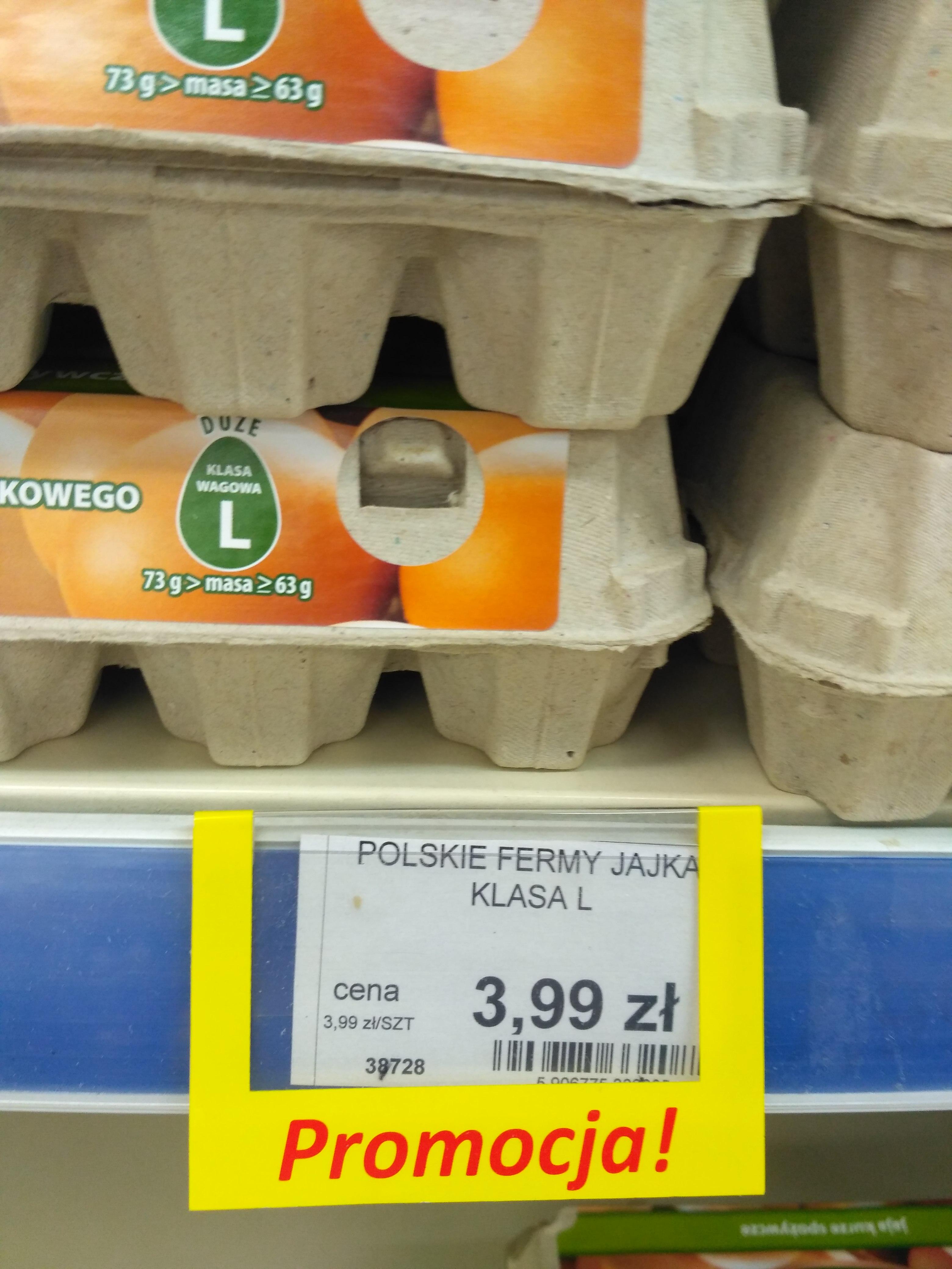 Jajka 10 sztuk L z chowu klatkowego LEWIATAN NYSA