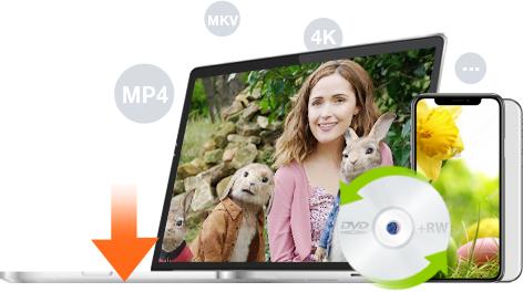 WinX DVD Ripper Platinum v8.8.0 DARMOWA LICENCJA