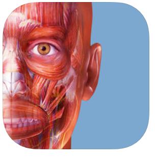 Aplikacja edukacyjna Muscle Premium (anatomia) za 4,19zł na Androida i 4,99zł na iOS