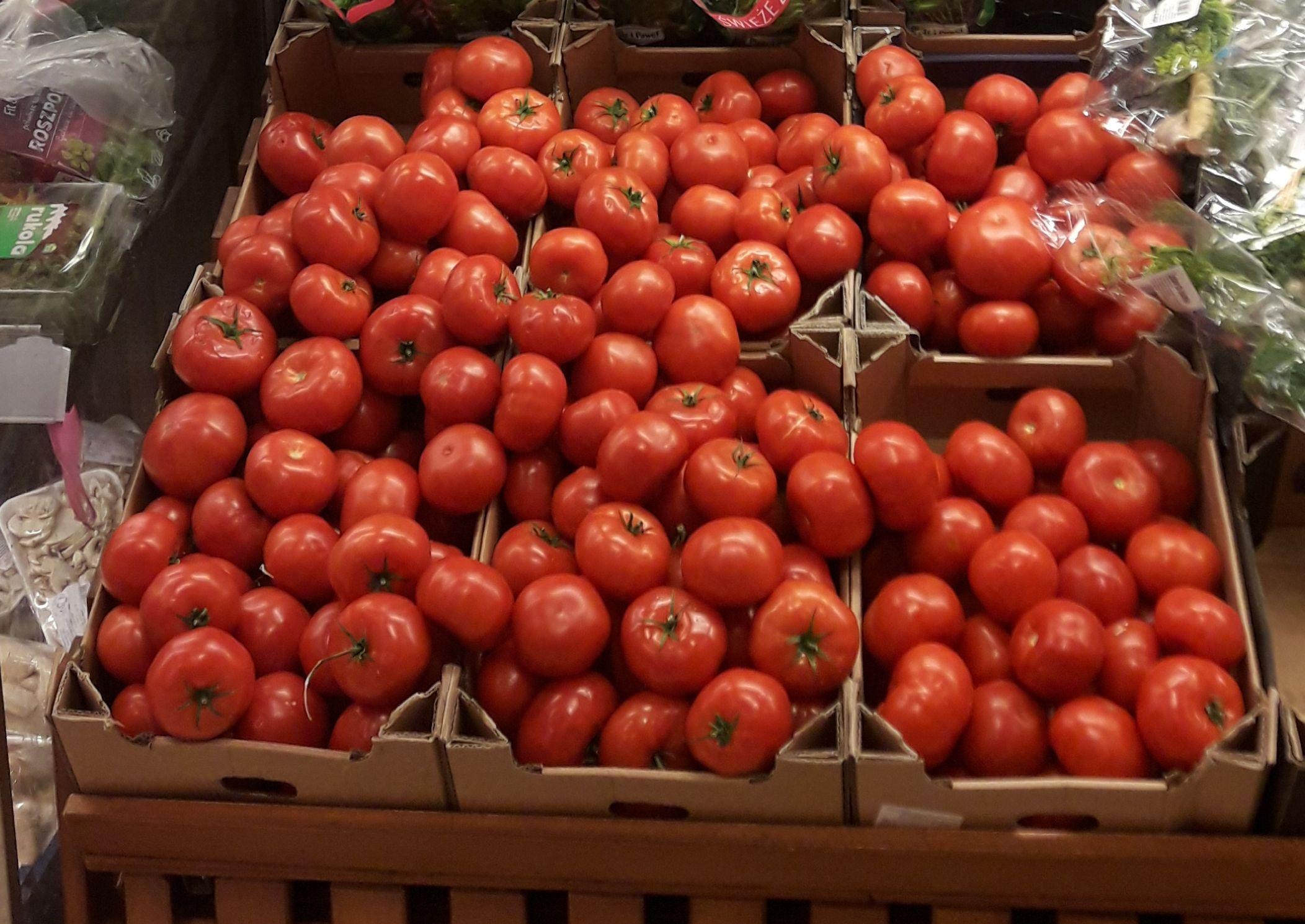 Pomidor czerwony Piotr i Paweł