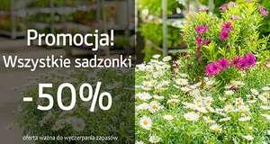 Sadzonki roślin -50% @ Świat Kwiatów