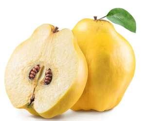 Pigwa / cena za 1 kg