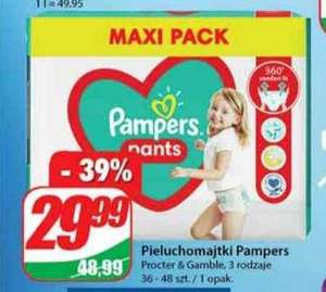 Pampers Pants Maxi Pack - DINO