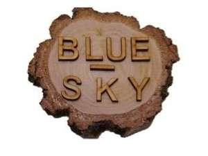 10% do końca 2021 w sklepie z pomocami dydaktyczno-terapeutycznymi Blue-Sky