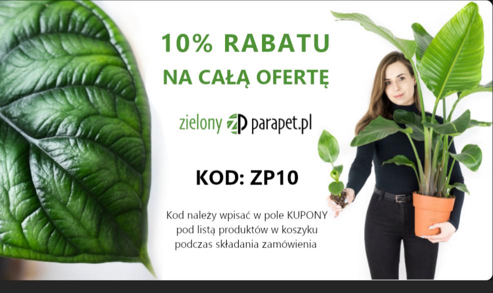 Zielony Parapet 10% zniżki na wszystko